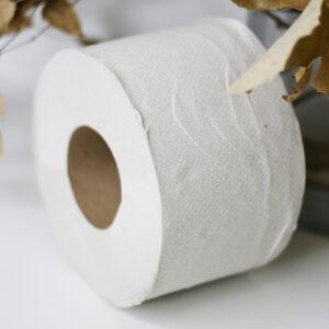 Туалетная бумага Джамбо макулатурная, ПРО 100м