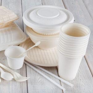Бумажная посуда